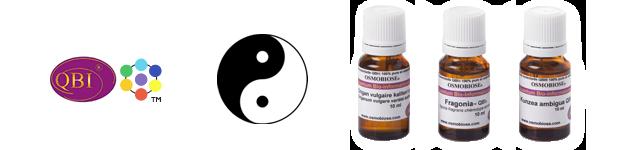 Le ternaire aromatique QBI® de l'Aromathérapie Quantique®