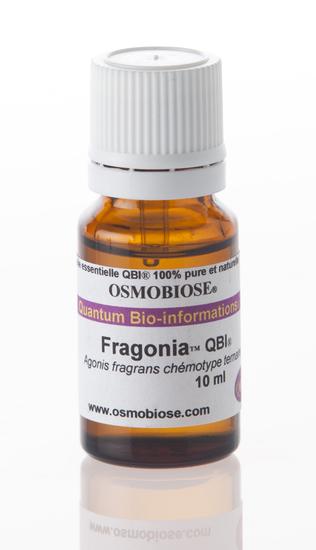 Fragonia feuilles QBI CT ternaire